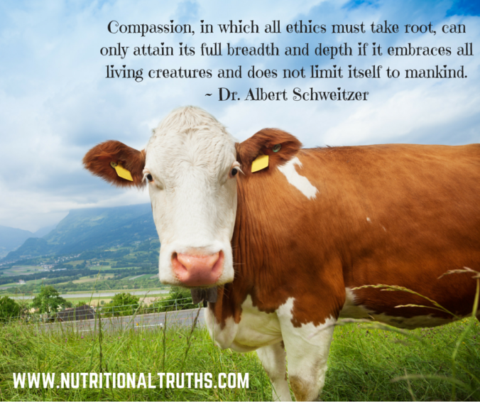 Compassion, in which all ethics must take root, can only attain its full breadth and depth if it embraces all living creatures and does not limit itself to mankind. - Dr. Albert Schweitzer (2)